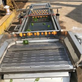 鑫洋食品级不锈钢清洗机西红柿鼓泡翻滚净洗机尺寸可定制厂家直销xy009