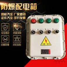 防爆电箱防爆接线仪表箱照明动力箱控制柜Y-99