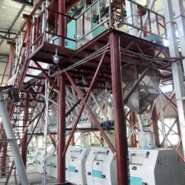 泰兴小麦磨粉设备,自动上料磨面机,面粉加工机械设备齐全