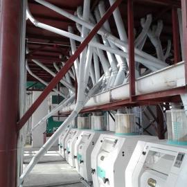 泰兴小麦面粉加工设备,面粉机械成套设备,小麦制粉生产线齐全