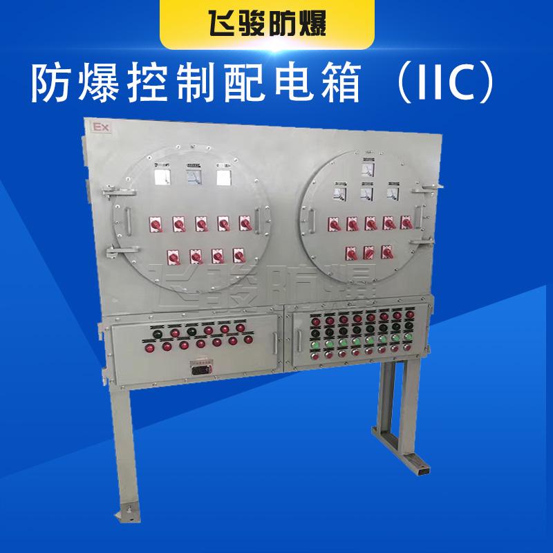 飞骏 非标定制IIC级防爆配电柜碳钢IP66防护 不锈钢防爆控制箱配电箱