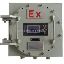 瑞恒工控壁挂防爆高量程氧气分析仪RHO-304