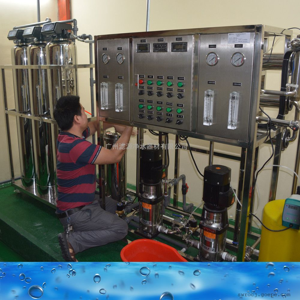 二级RO反渗透纯化水设备250-100000L/H