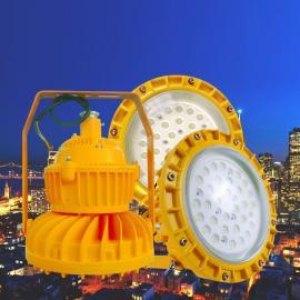 BLD120E-20W防爆应急照明灯