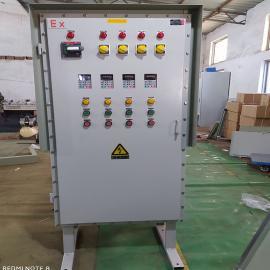 抚运电气非标定制防爆控制柜检修照明动力接线箱Y-88