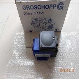 Groschopp 马达 IGLU 65-40