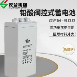 双登铅酸免维护2V300AH蓄电池电力、通xin专用GFM-300
