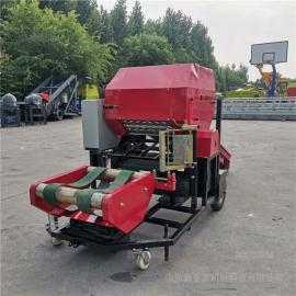 圣泰巨菌草的营养价值 东三省玉米杆压块打捆机YK5552