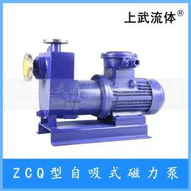 不�P�自吸磁力泵 型自吸式 自吸式磁力��颖�ZCQ