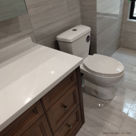 法国SFA别墅地下室污水提升器 污水处理设备安装 安装方法 示意图SANI-