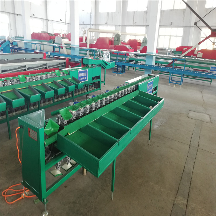 凯祥XGJ-Z-1柠檬分选机,柠檬重量分级机,分选柠檬大小的机器