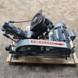 勇霸WW-25/0-20全无油二氧化碳压缩机,2mpa二氧化碳增压机出售