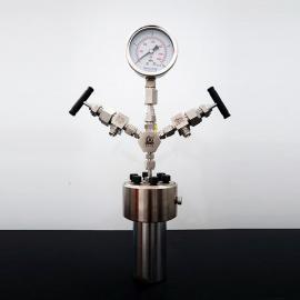 森朗仪器(Sen Long)高温高压水热反应釜10ml