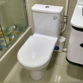 SFA污水提升器 全自动排污泵 地下室污水处理方法 SANIPRO
