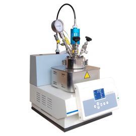 台式微型反应釜E100