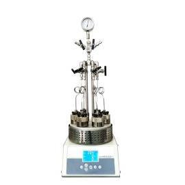平行反应器SLPD450