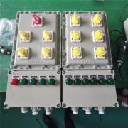 依客思立式防爆动力配电箱防爆开关箱IIB IICBEP56-19k