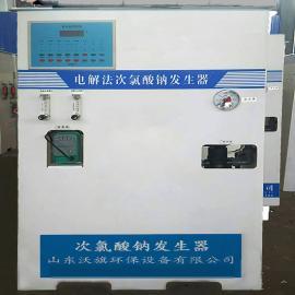 美信沃旗单村供水消毒设备 电解食盐制氯消毒设备WQCL-50