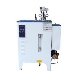 立浦热能食品加工水泥养护专用蒸汽发生器LDR0.013-0.7