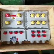 依客思电机泵机风扇防爆操作箱按钮开关防爆箱BLZ51-A6K6