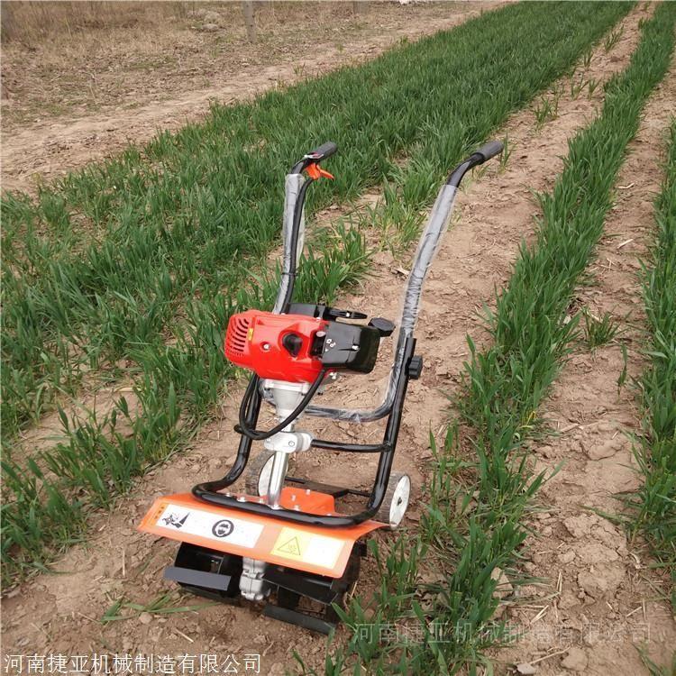 捷亚JYG-144A手推式割草机农用割草新方式