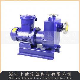 防爆自吸磁力泵 防爆磁力自吸泵 泵ZCQ