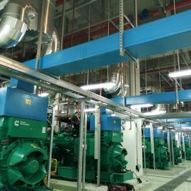 绿联净化外企工厂柴油发电机尾气净化装置 氮氧化物治理产品 烟气脱硝 SCR脱硝系统