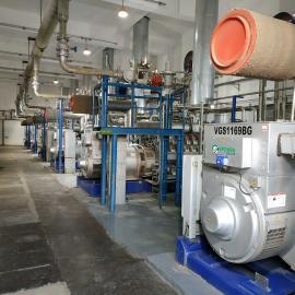 绿联净化 发电机尾气处理设备 去除氮氧化物装置 烟气脱硝产品 SCR脱硝系统