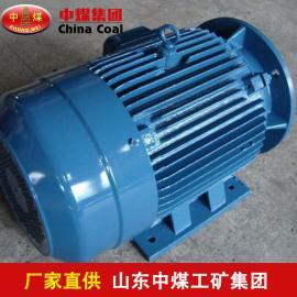 中煤绞车电机生产YBJ系列绞车电机