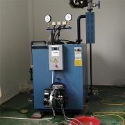 立浦热能500KG-2T燃油燃气蒸汽发生器 全自动燃油燃气蒸汽锅炉
