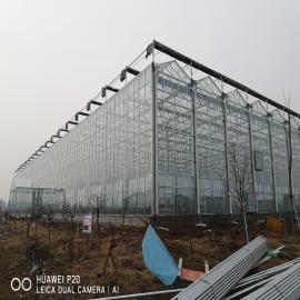 奥农苑温室奥农苑连栋智能玻璃温室WD1208