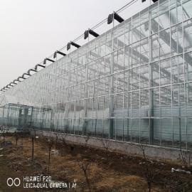 奥农苑玻璃连栋智能温室纹络式