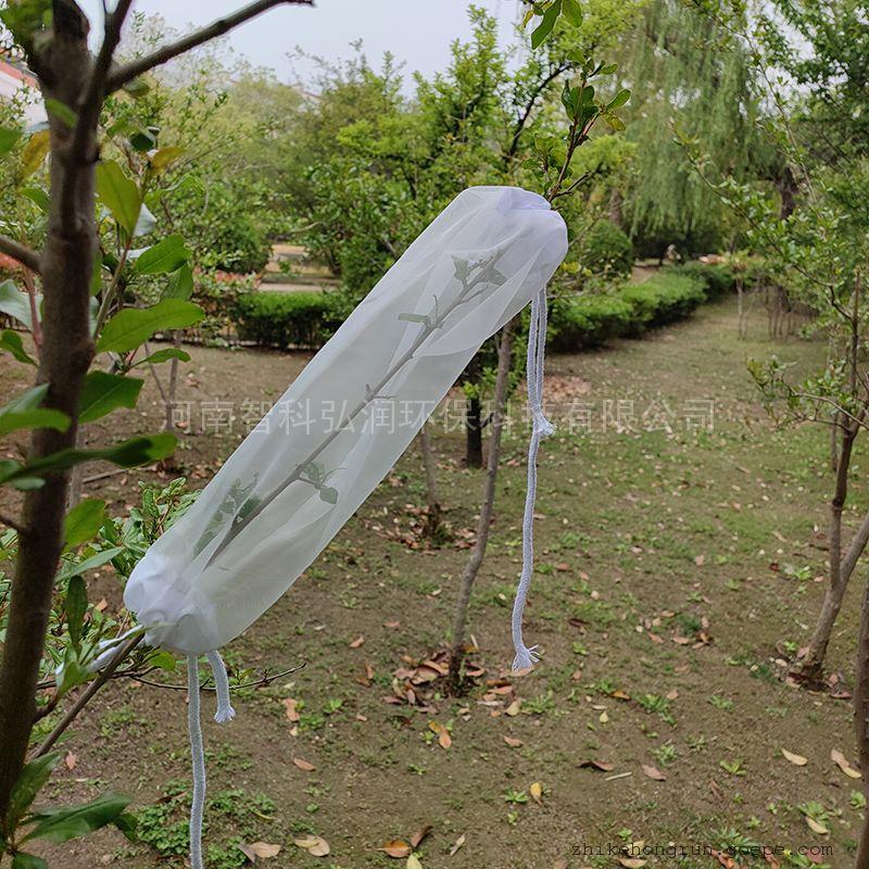 枝条养虫笼 蚊虫饲养笼 叶笼 树叶笼 病媒生物监测ZK-ZCL-E