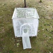 不锈钢养虫笼养蚊笼顶部透明布蚊虫饲养笼昆虫饲养多规格可拆卸ZK-YCL